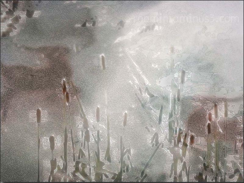 graffiti cattails snow composite roamin