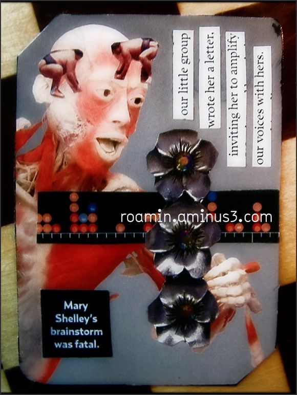 atc artist-trading-cards roamin series