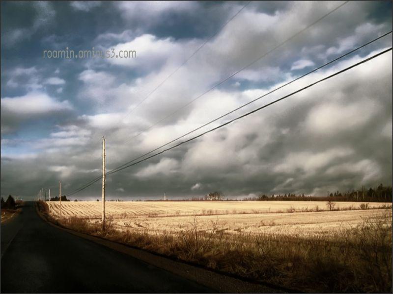 power-lines phone-lines field morning roamin corn