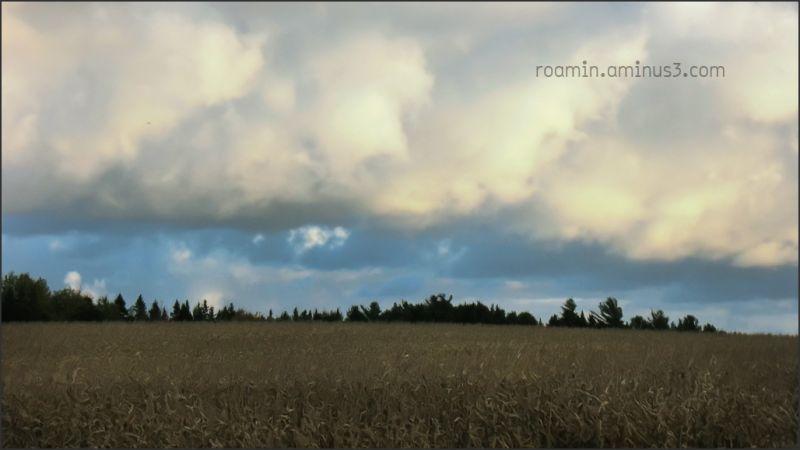 storm-clearing breaking blue-skies fields roamin