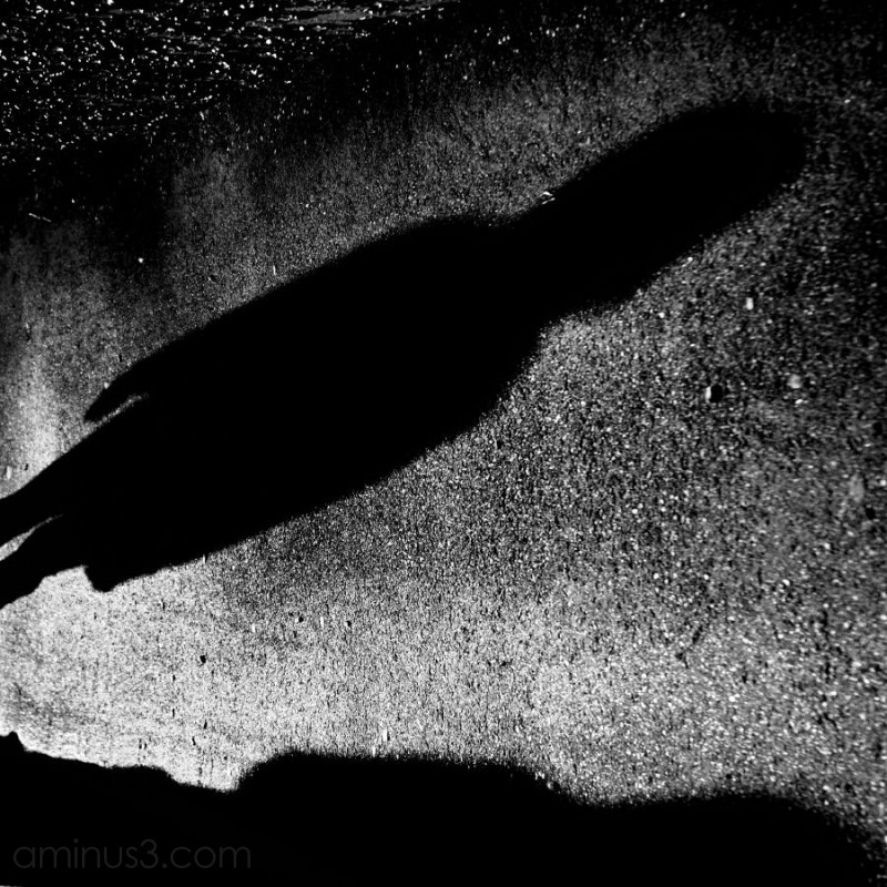 eerie shadow on pavement, high contrast