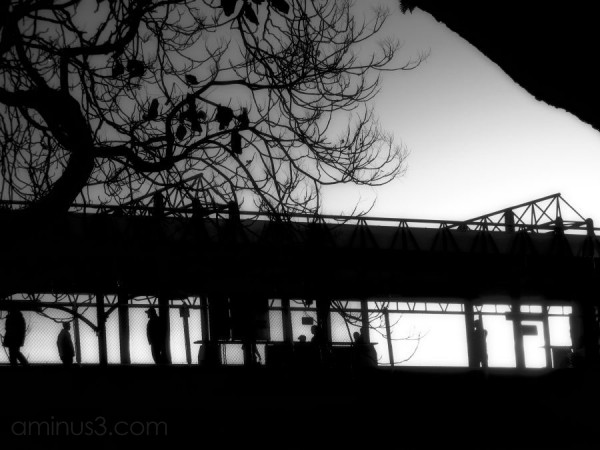 silhouetted elevated train station