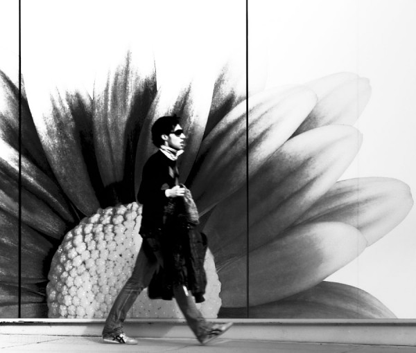 A man walking against a large flower on wall