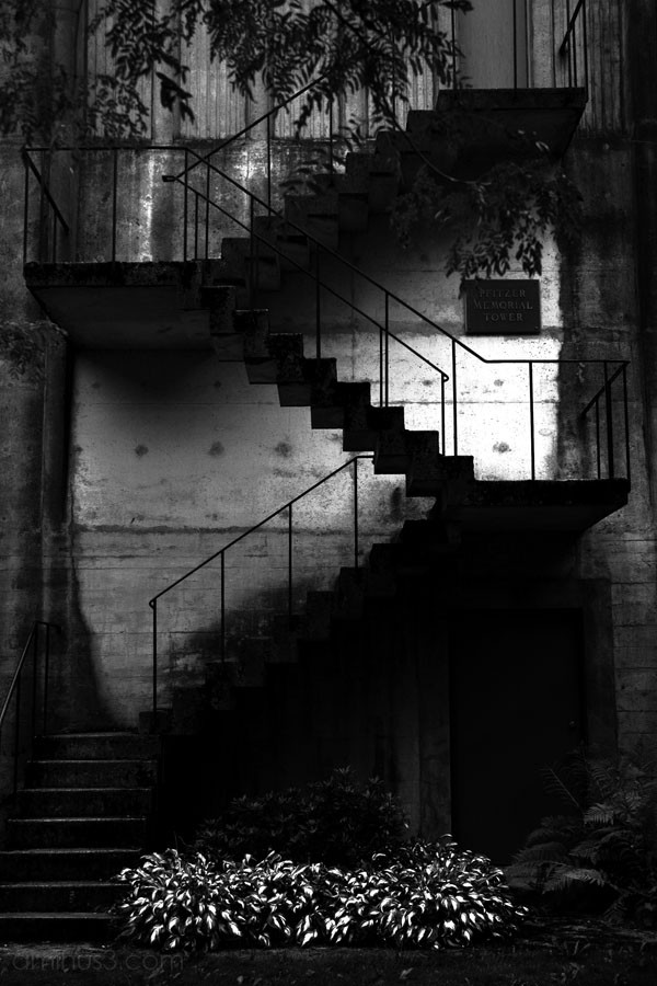 stairs on the outside of an abbey