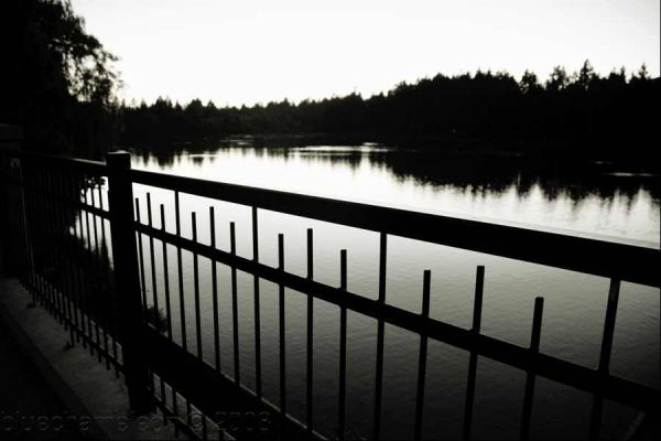 Looking at a lagoon through an iron fence
