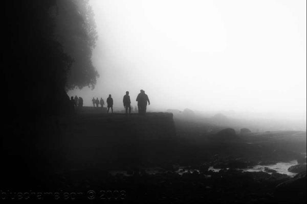 people walking in thick fog along a seawall