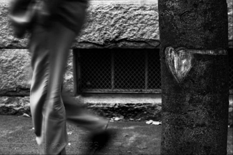 blurred man walking tree with carved heart