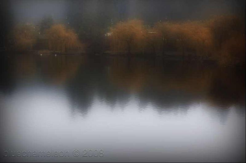 fall colurs and fog over a lagoon