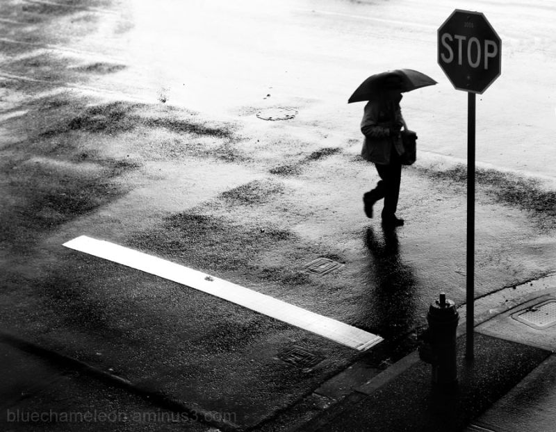 a man walking in rain with umbrella past stop sign