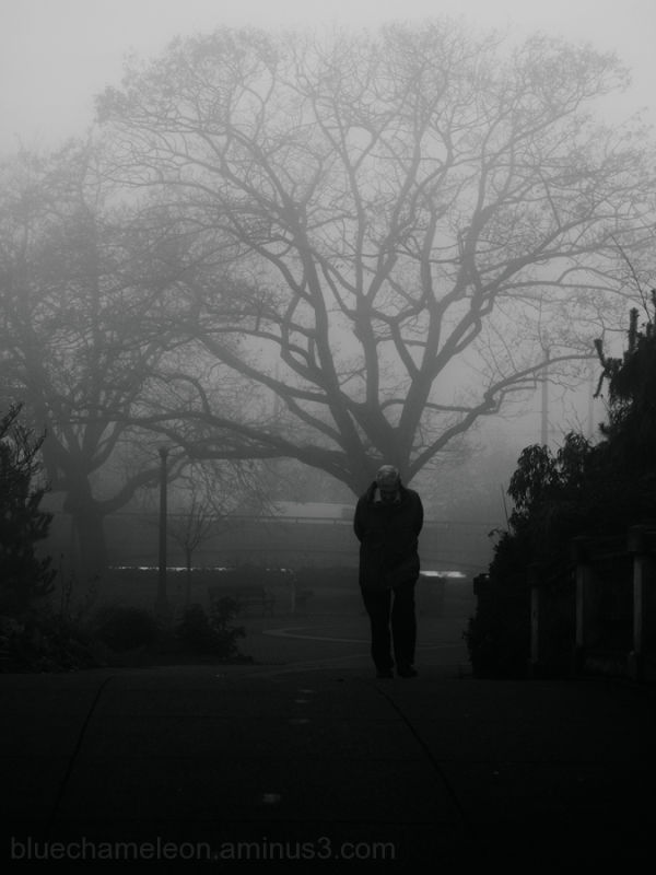 A man, head bowed walking in fog, large tree behin