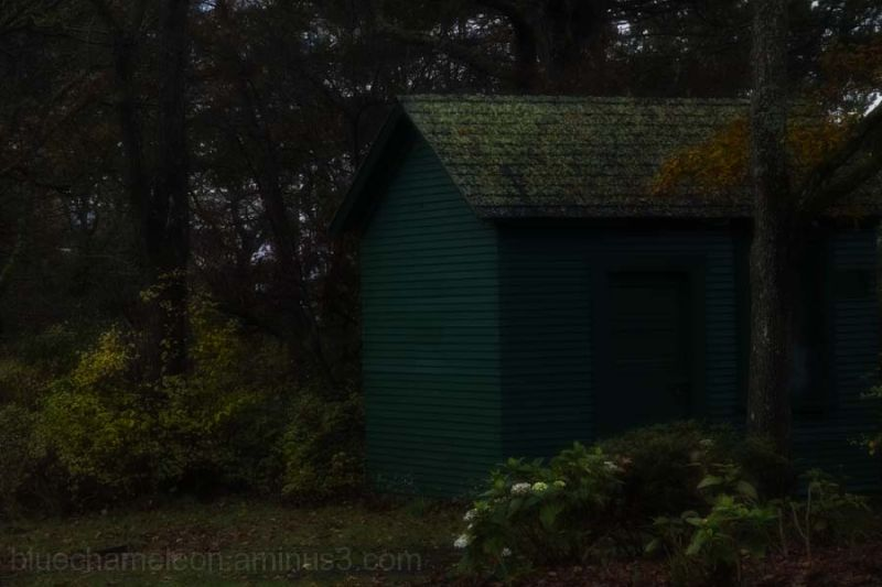 A small cabin in the dark woods