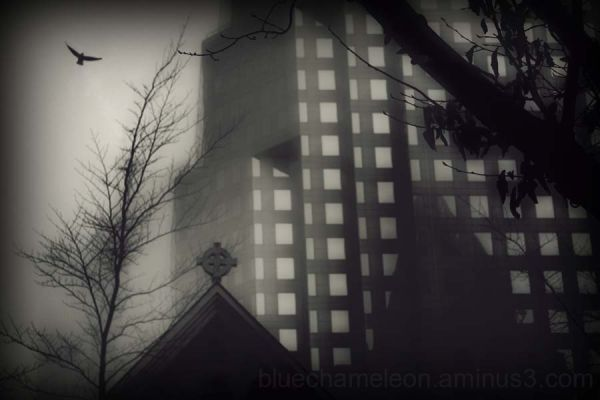 An old church, building & bird in the fog