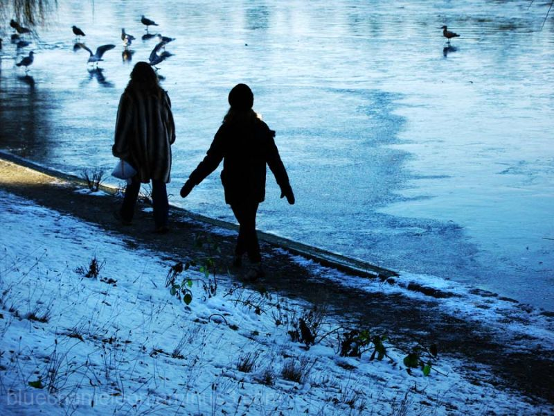 2 people walking past frozen lagoon, birds flutter