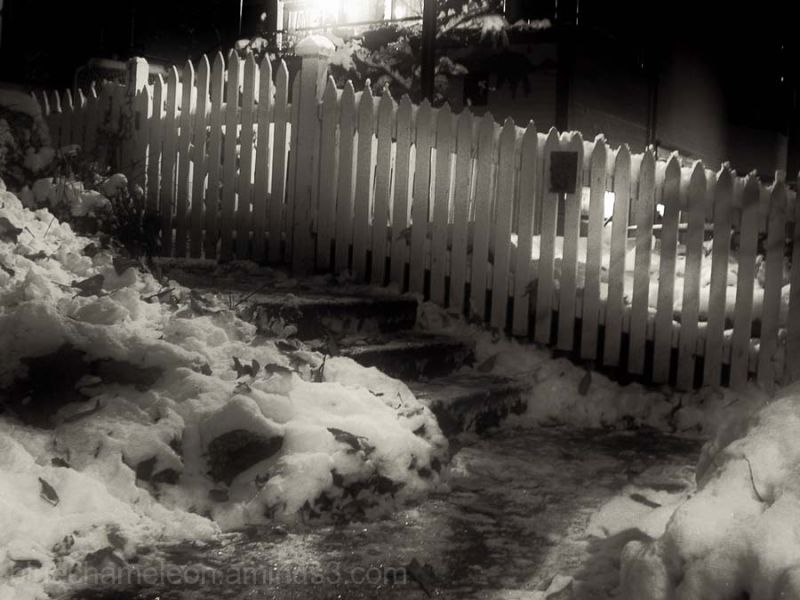 Snow covered steps and white fence