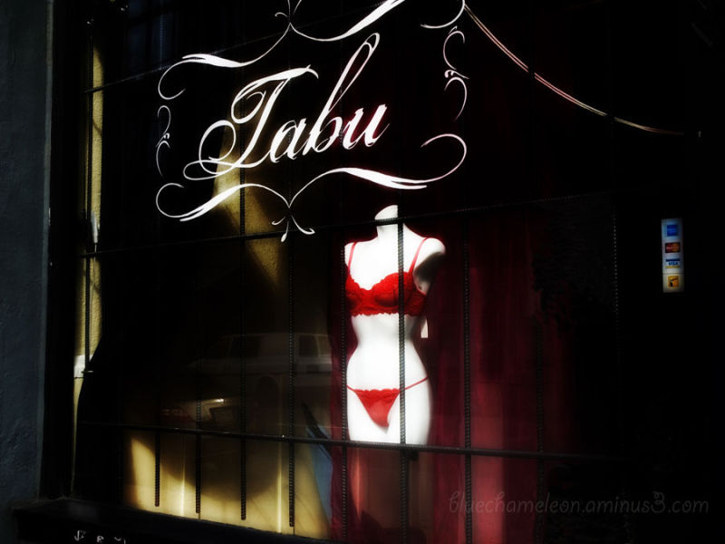Lingerie in a store window