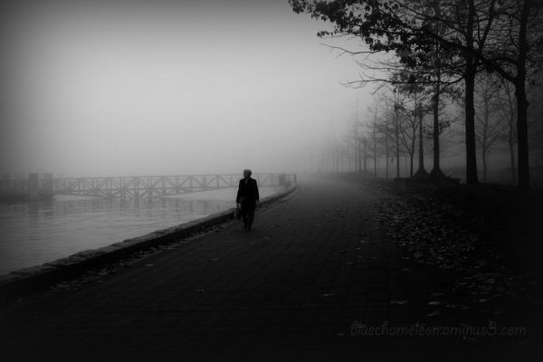 A lone woman walking along ocean in fog