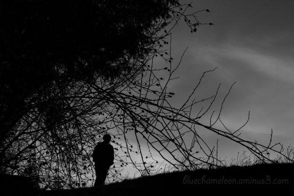 A lone man on a hill walking through thorns