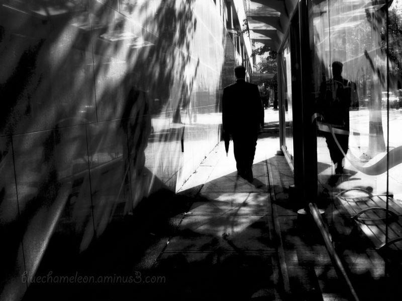 A man walking past bus stop, reflections on wall