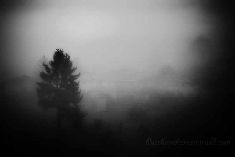 Fog over a Masonic Cemetery
