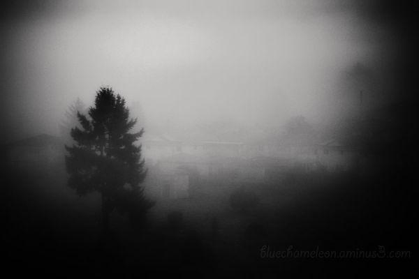 Fog over a Masonic Cemetery