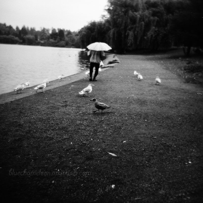 A man with an umbrella walking by lagoon