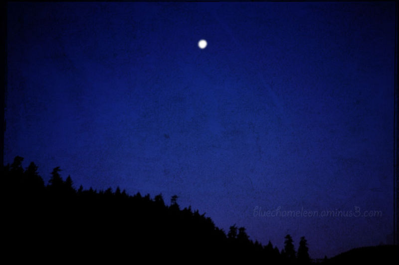 A full moon over a ridge, cobalt blue sky at night