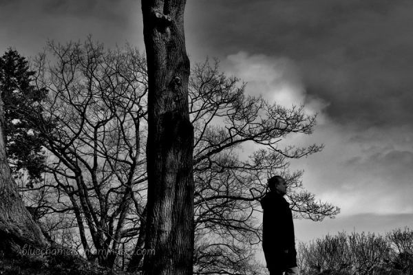 A lone man walking through trees, dramatic sky