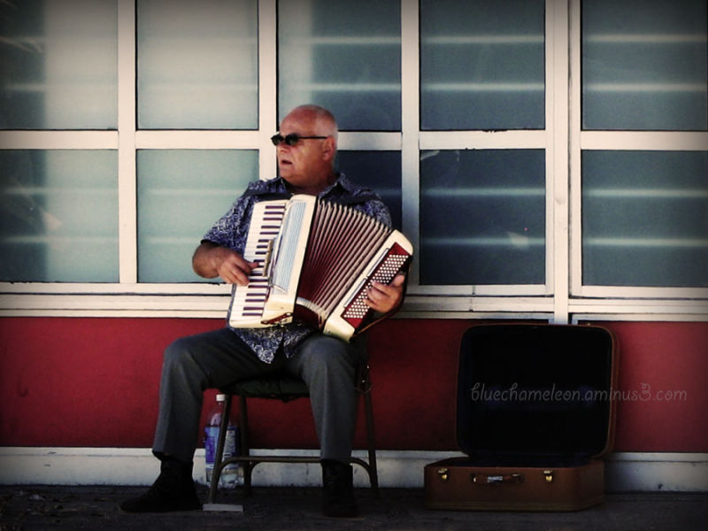 A man playing an accordion on main street
