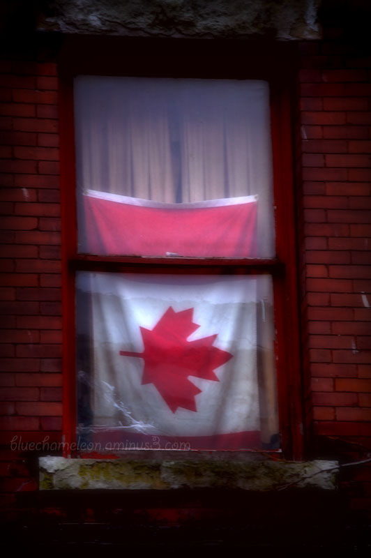 A Canadian flay sideways in a window of brick bldg