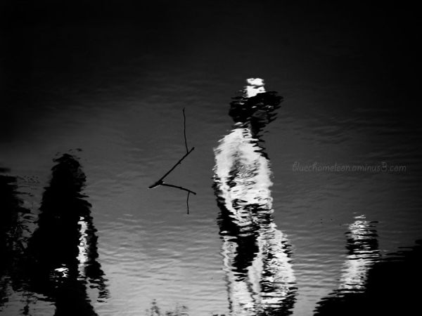 3 people reflected in water