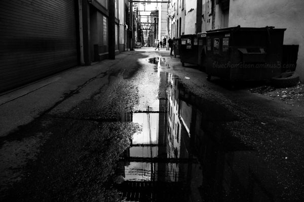 Puddles in a city alley reflecting wires & poles