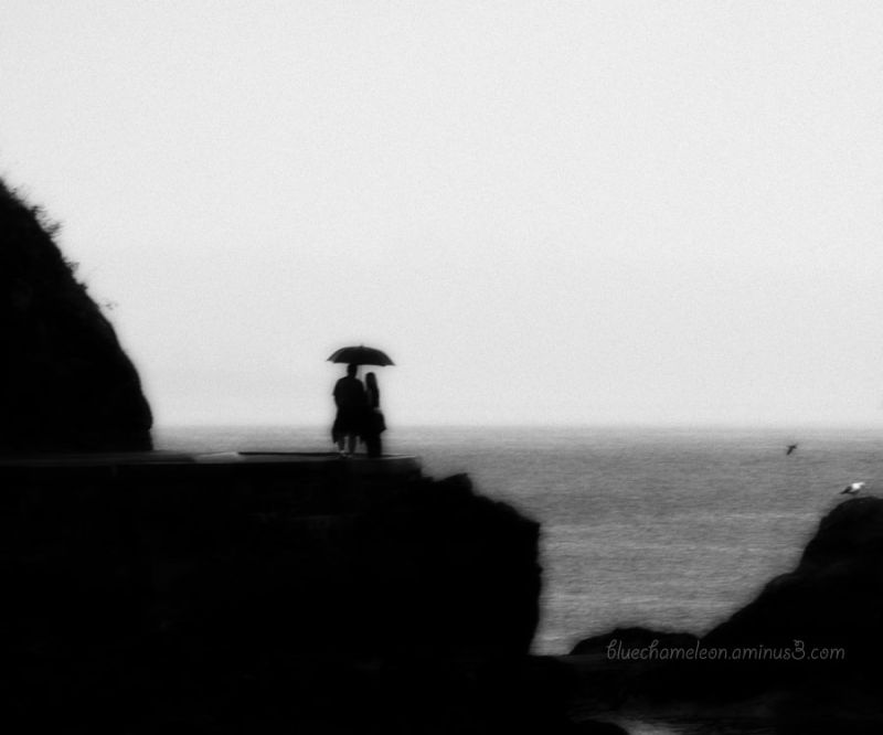 A couple under umbrella in rain & fog at ocean