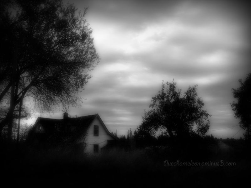 A spooky house hidden in bushes, trees & clouds