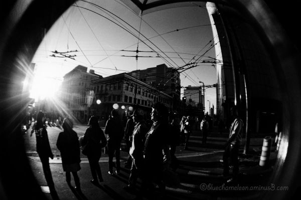 A crowd of people in street, distorted by fisheye