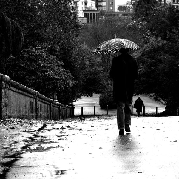 Two people on a stone bridge in park on rainy day