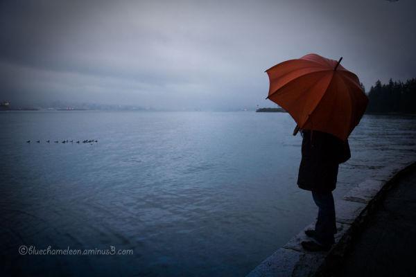 Woman with orange umbrella at seaside