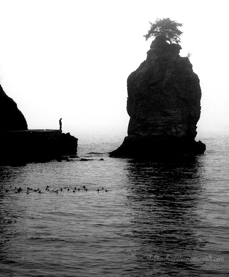 A lone man standing in fog staring into ocean