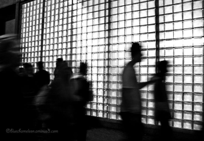 Silhouetted & blurred people against glass wall