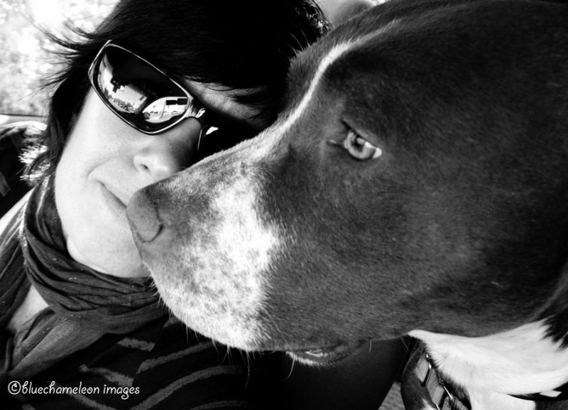 A portrait of a woman and a pit bull