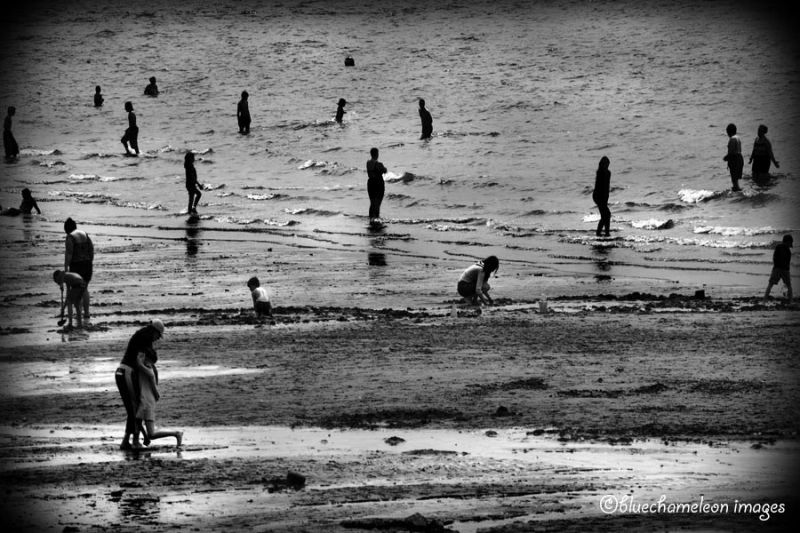Scatters swimmers at second beach