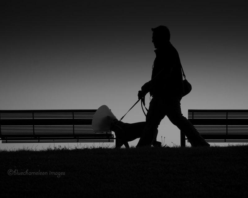 A man walking a dog who has cone on head