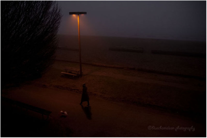 A woman and dog walking  through fog at night