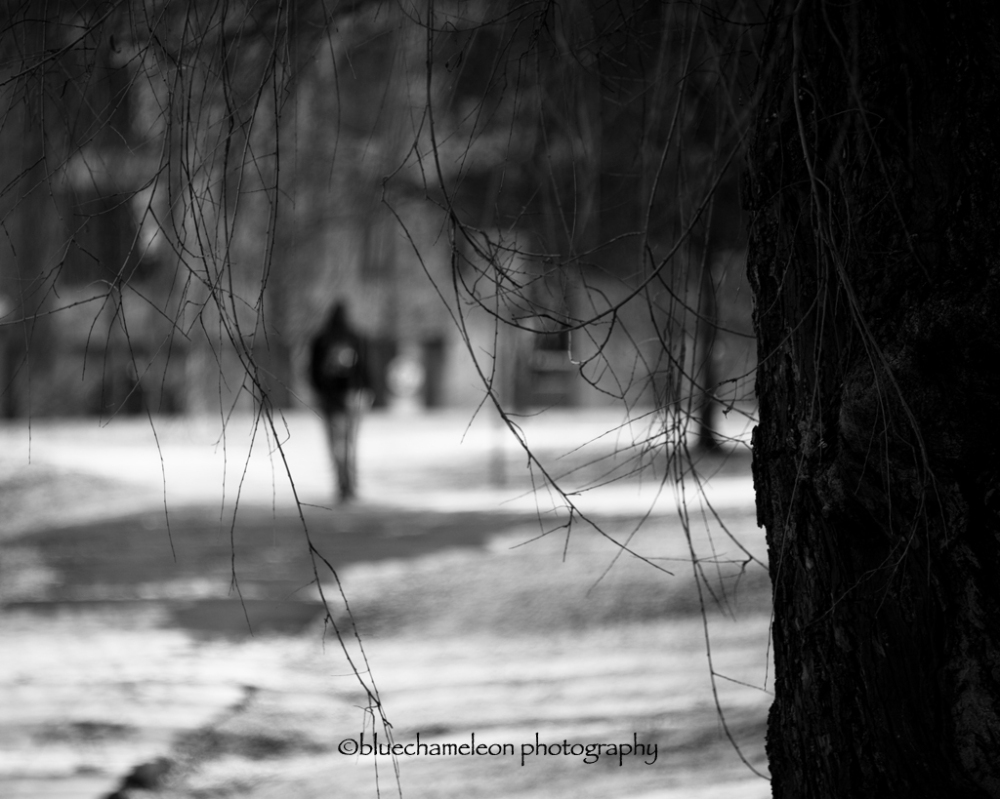 Out of focus man walking through branches