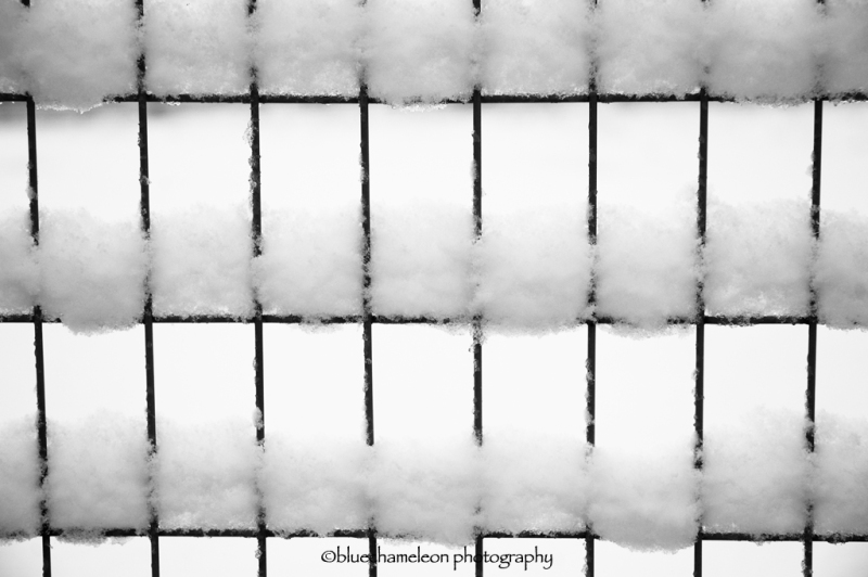 Pattern of snow on wire fence
