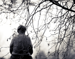 A statue of a boy through tree branches