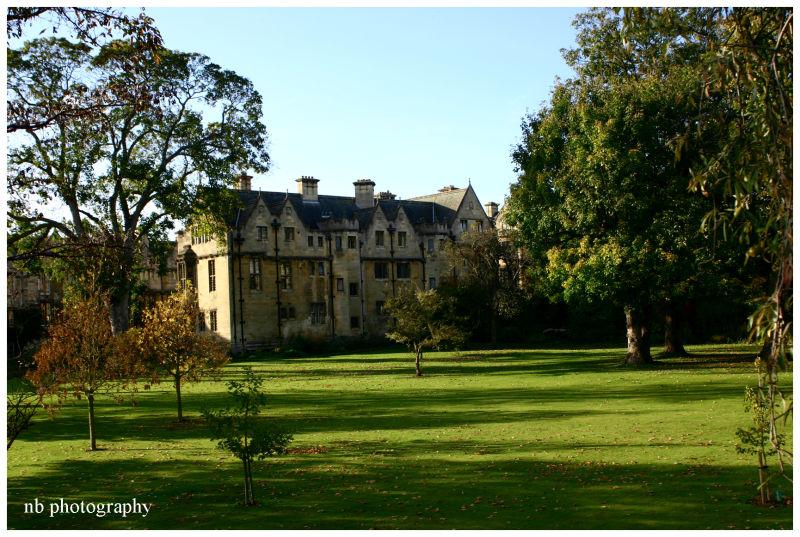 Merton Fellows' Garden