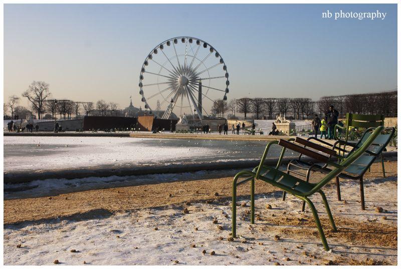 Les Tuileries sous la Neige de Janvier