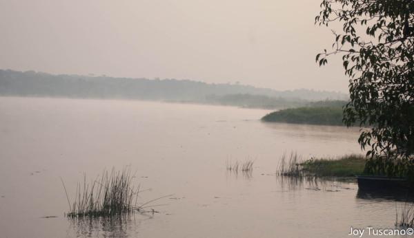 Ugandan Nile