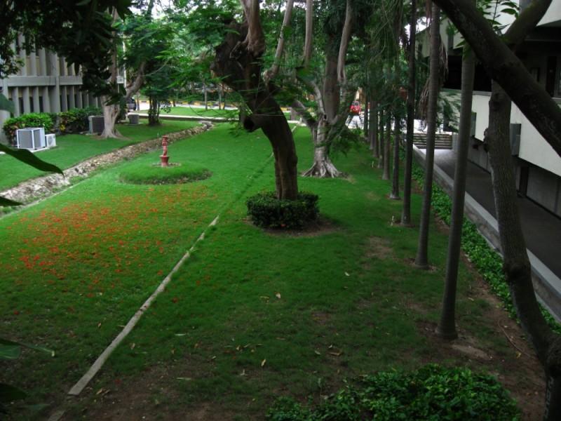 Jardin - UN - Barranquilla