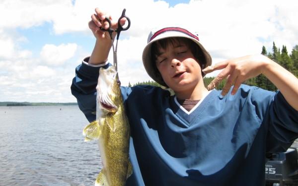 Walleye from Canada